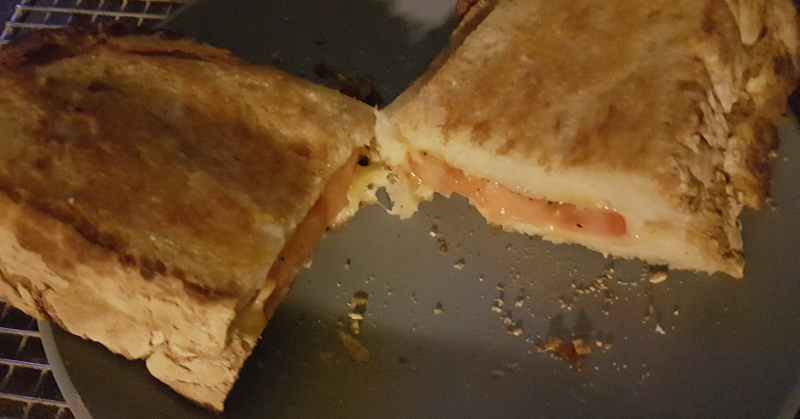 grilled cheese sandwich with tomato and oregano